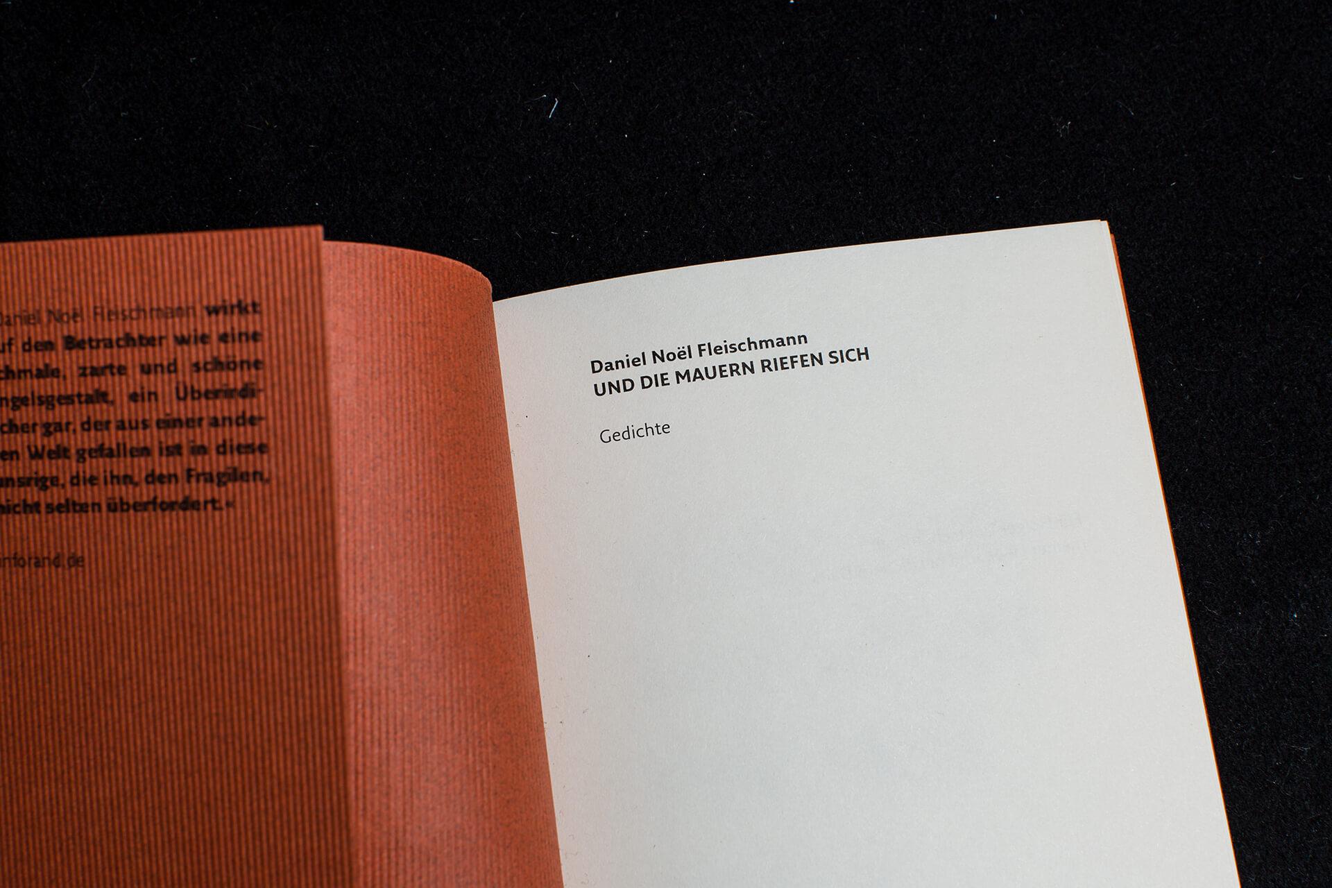 Denken & Handeln, Fine Heininger, Buchgestaltung, Cover, Innensatz, Typografie, Layout, Reinzeichnung, Druckvorstufe, Wolff Verlag, Daniel Noel Fleischmann, Und die Mauern riefen sich